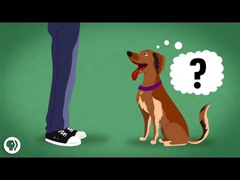 6 of The Best TED Ed Riddles to Use with Students in Class